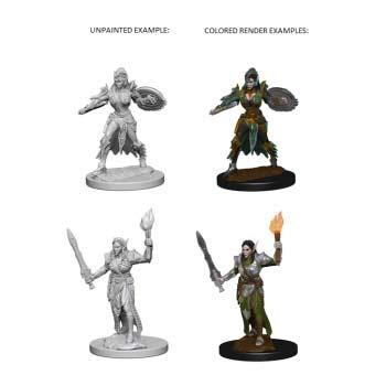 Pathfinder: Elf Female Fight