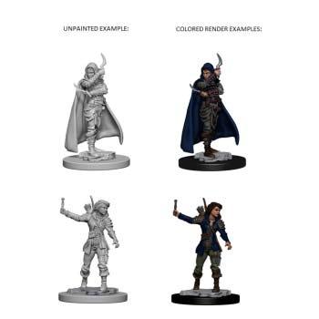 Pathfinder: Human Female Rogue (2)