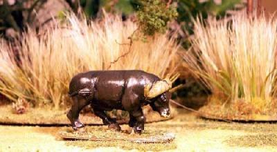 Cape Buffalo I (1)