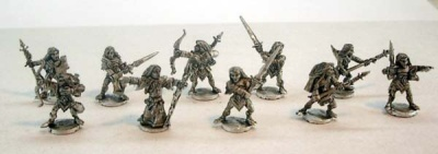Blight Haven Wood Elf Warband