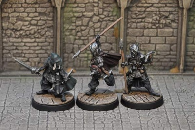 Drow Warriors II (3)