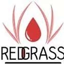 RedGrass Games