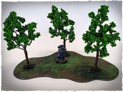 Model trees - 32 mm scale, walnut