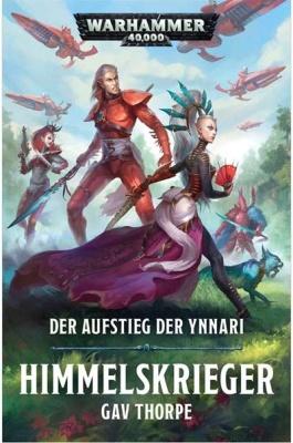 Himmelskrieger (Taschenbuch)