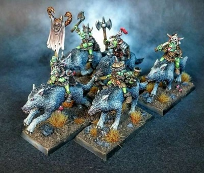 Goblin Wolf Riders (5)
