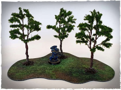 Model trees - 32 mm scale, eucalyptus