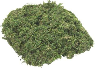 Moosstreu 25g grün