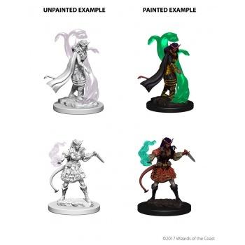 D&D: Tiefling Female Sorcerer (2)