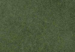 Moorboden-Gras