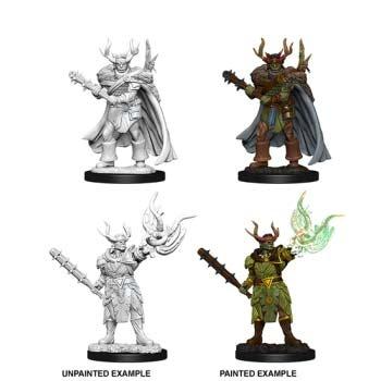 Male Half-Orc Druid (2)