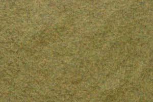 Conquest Gras, mittelgrün
