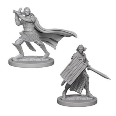 Pathfinder: Elf Male Paladin