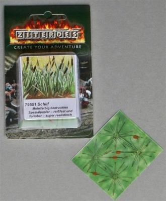 Schilf, 16 Pflanzen