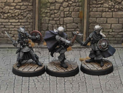 Drow Warriors III (3)
