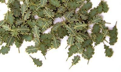 Laub: Eichenblätter grün (1:35)