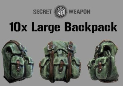 Large Backpacks (10)