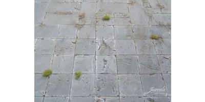 Platte Hofplatte klein (20)