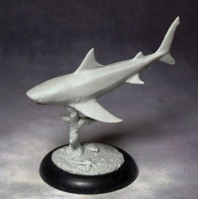 Gray Whaler Shark (diving)