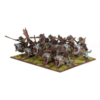Goblin Fleabag Riders Regiment (10)