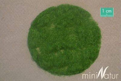 Grasflock (Sommer) 2mm (50g)