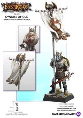 Cynuise of Old, Barrow Knight Banner Bearer