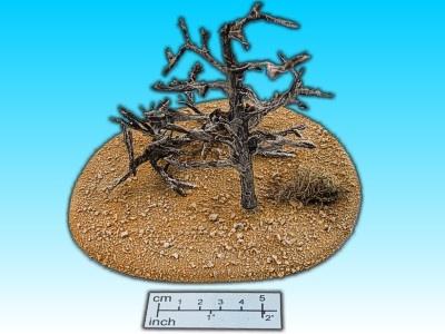 Geländestück verdorrte Bäume