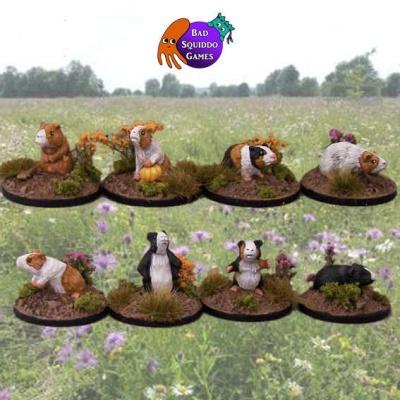 Guinea Pigs (8)