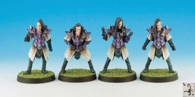 Dark Elf Linemen (4)