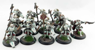 WARMACHINE: Retribution Houseguard Halberdiers + Thane (13)