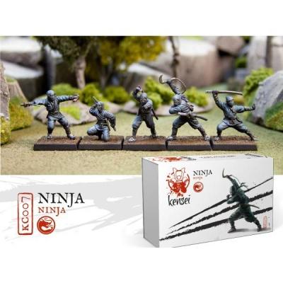 Ninjas (5)
