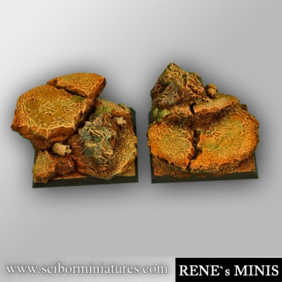 Royal Lion Ruins 40mm square bases (OOP)