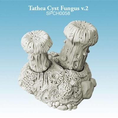 Tathea Cyst Fungus v.2