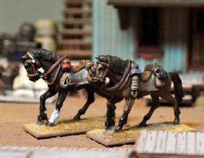 Riderless Horses (3)