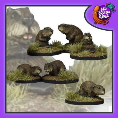 Beavers (6)