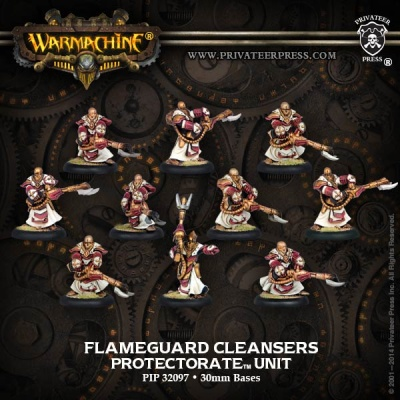 Protectorate Flameguard Cleansers Unit Box (10)