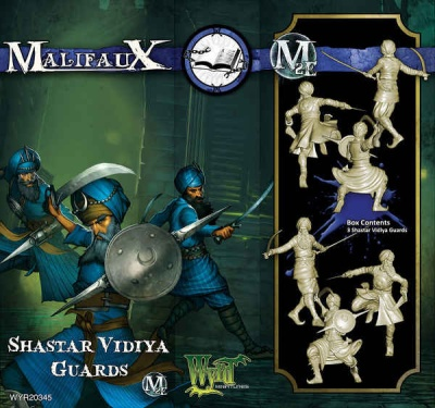 Shastar Vidiya Guards (3)