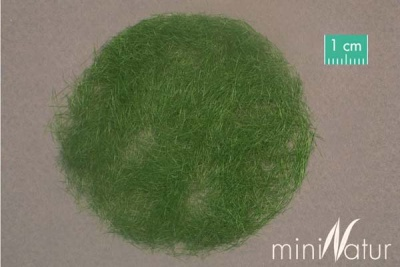 Grasflock (Sommer) 6,5mm (50g)