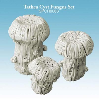 Tathea Cyst Fungus Set