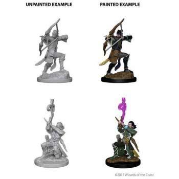 Pathfinder: Elf Male Bard (2)