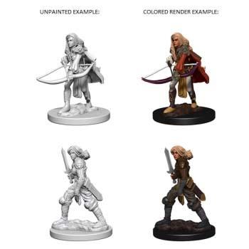 Pathfinder: Human Female Fighter (2)