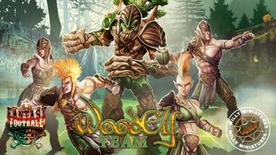 Wood Elf Team (15)