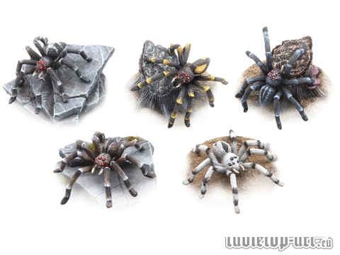 Riesenspinnen Set (5)
