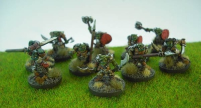 Blight Haven Orc Marauders (10)