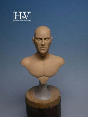 Anathomic Bust