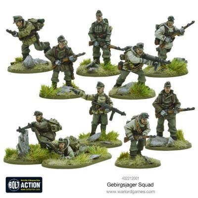 Gebirgsjager squad (10)