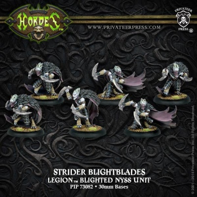 Legion of Everblight Strider Blightblades/ Rangers Unit Box