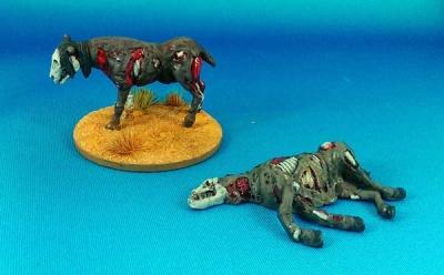 Rotten Horses