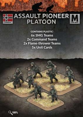 Assault Pioneer Platoon (Plastic)