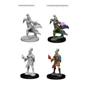 Pathfinder: Elf Female Sorcerer (2)