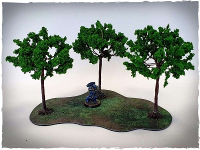Model trees - 32 mm scale, maple